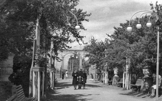 старая фотография парка