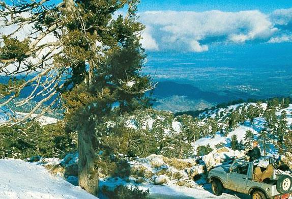 Горы Троодос в декабре