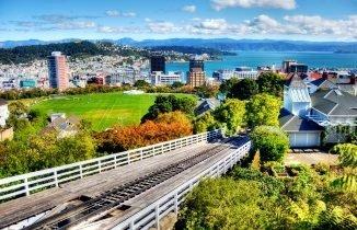 Отношение к иммигрантам в Новой Зеландии