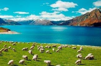 Погода в Новой Зеландии