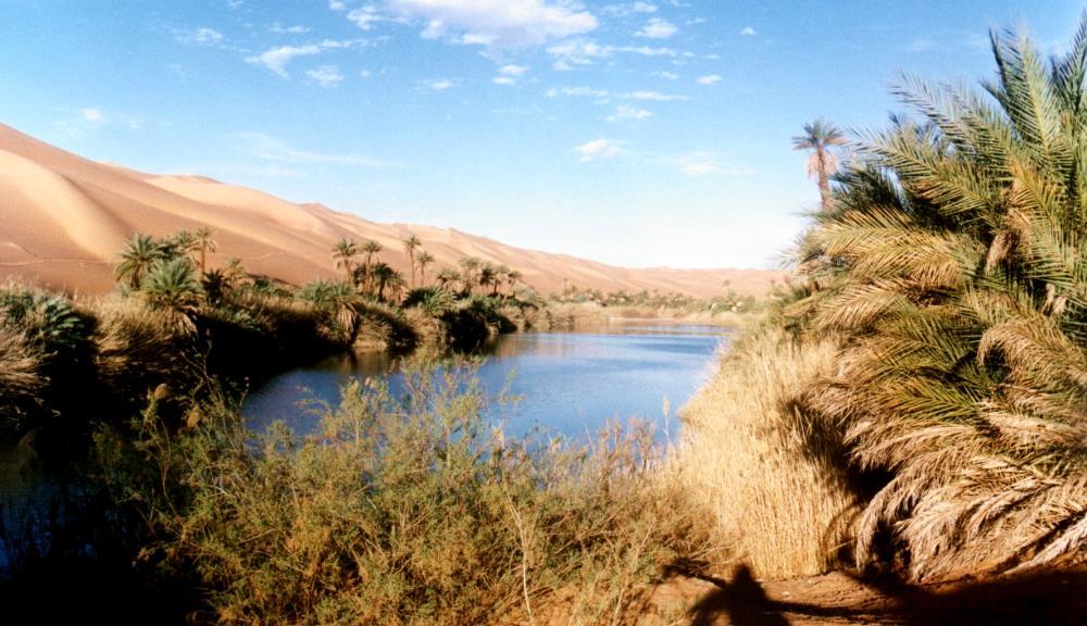 Климат и растительность Среднего Востока