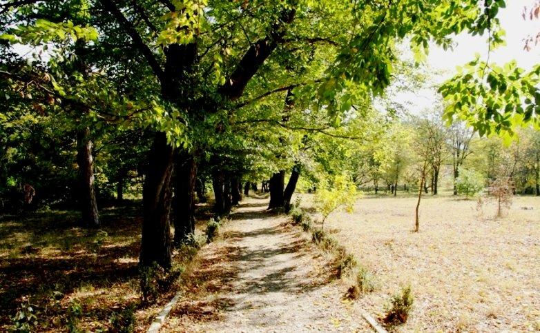 Милештский сад в Молдове