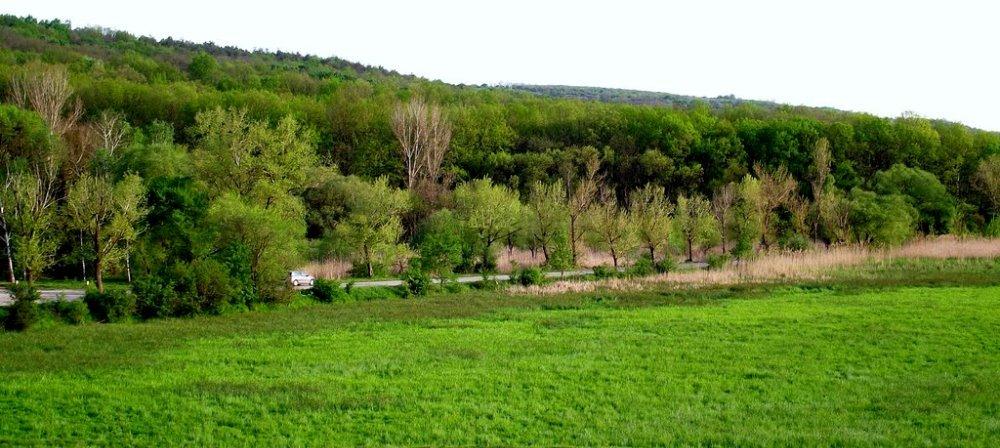 Парк в селе Балабанешты в Молдове