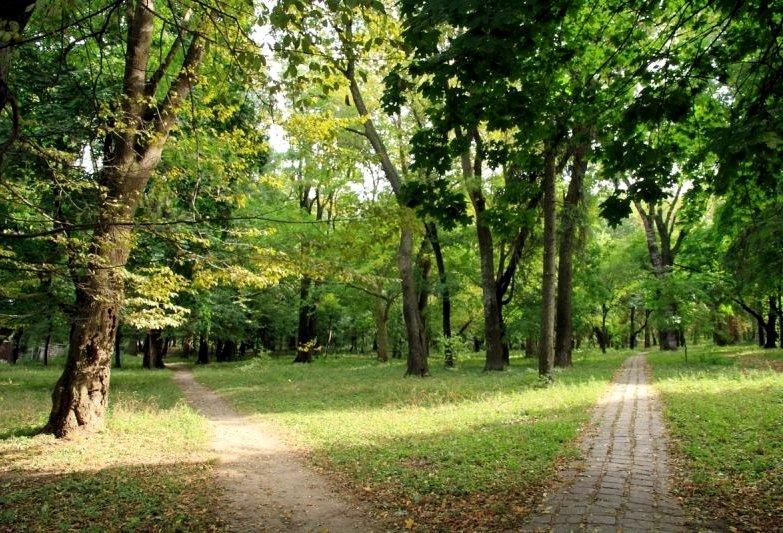 Парк в селе Темелеуцы