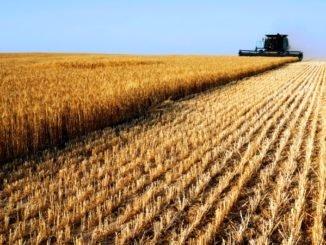 Сельское хозяйство и промышленность Среднего Востока