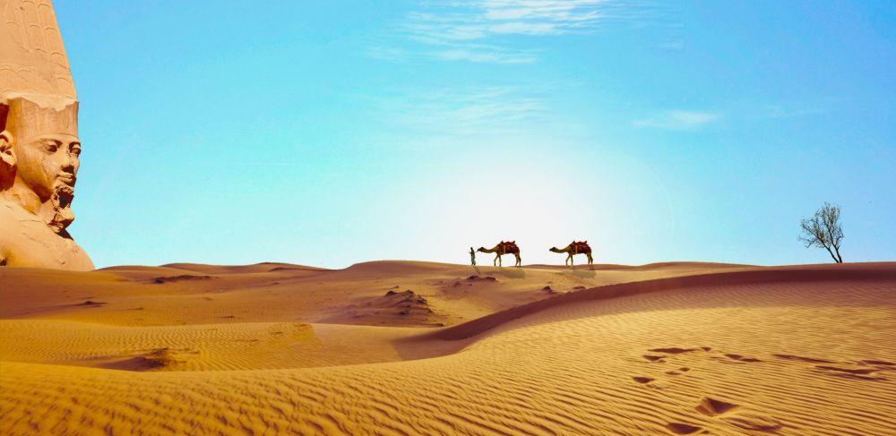 отдых в Египте в декабре