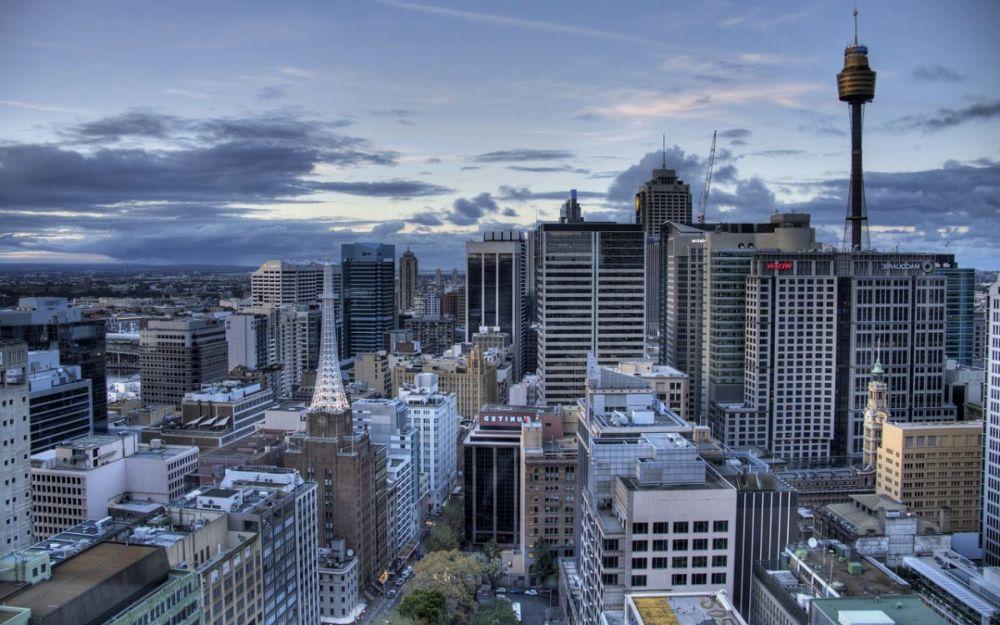Программисты в Австралии и их перспективы