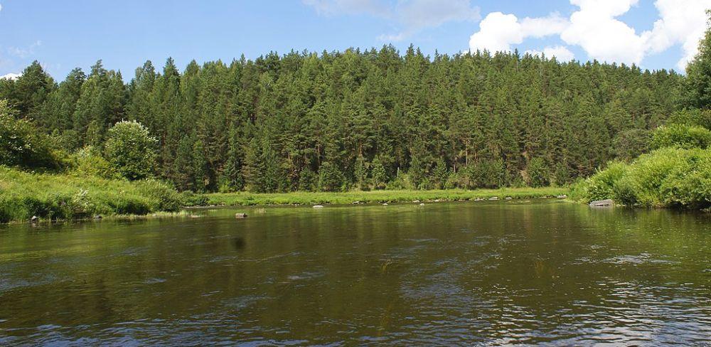 река Салда