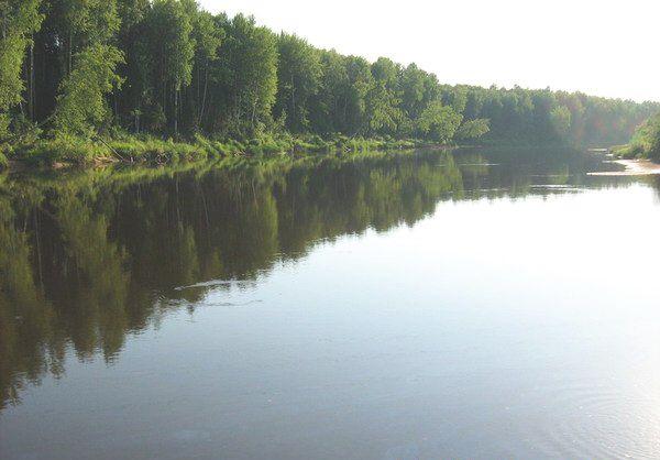 река Южная Кельтма